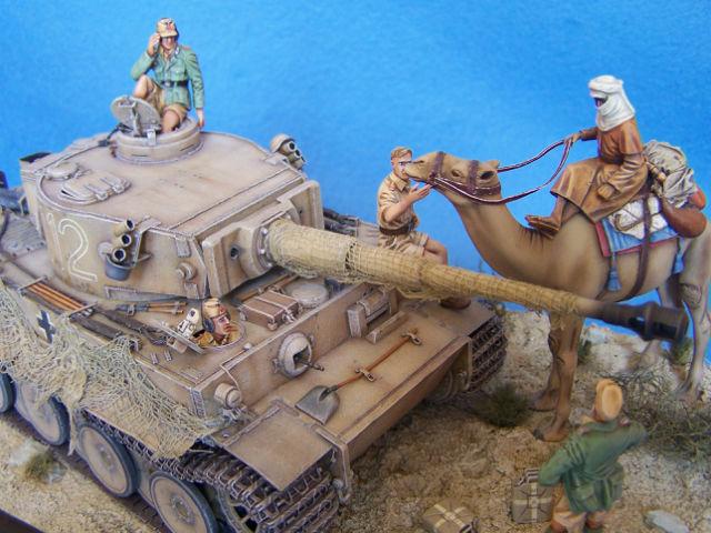 Tigre dans le désert 0506f4