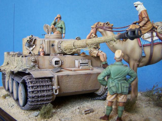 Tigre dans le désert 0564h0
