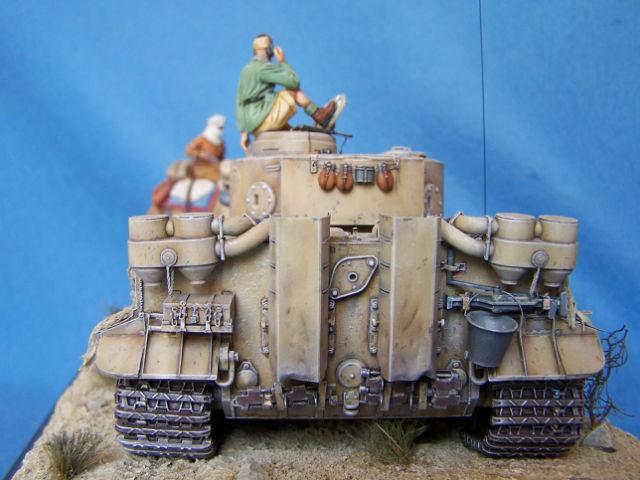 Tigre dans le désert 05ak2g