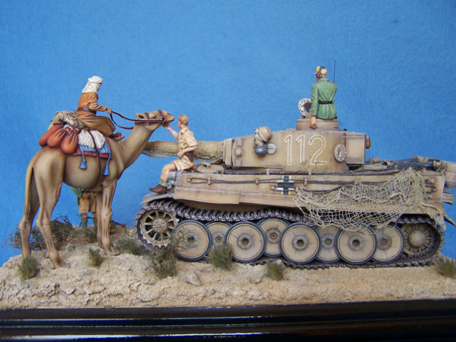 Tigre dans le désert 05kgxy