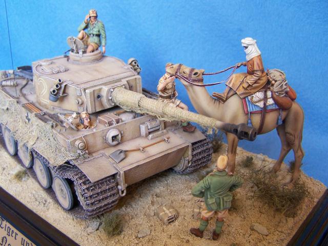 Tigre dans le désert 05p4rm